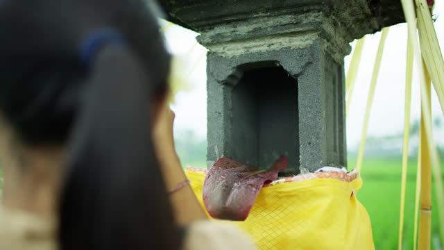 vídeos de stock e filmes b-roll de rice field temple shrine woman performing canang sari - benção