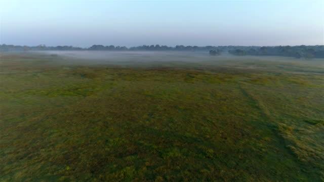 vídeos y material grabado en eventos de stock de campo de arroz (arrozales) - paisaje mosaico