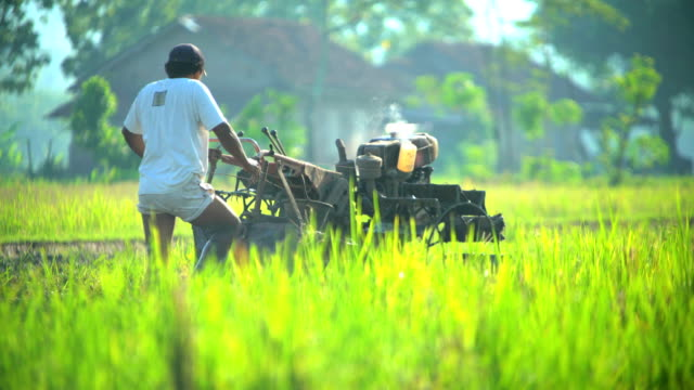 rice fields being ploughed by indonesian male java - irrigation equipment stock videos & royalty-free footage