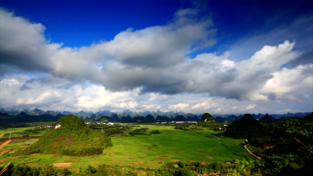 rice fields in putao town,yangshuo,guilin,china - guilin stock videos & royalty-free footage