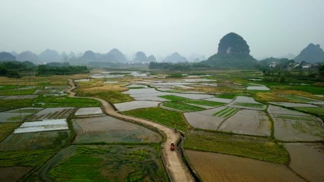 Reisfelder der Karstberge von Guilin, China