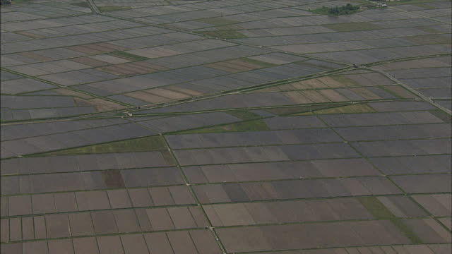 Rice paddies fill an expansive countryside.