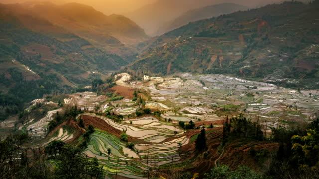 Rice paddy field in Duoyishu laohuzui aka tiger mouth yuanyang China