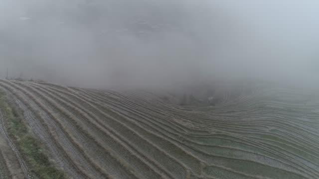 stockvideo's en b-roll-footage met rice paddy in longsheng, guilin, guangxi, china - rice terrace