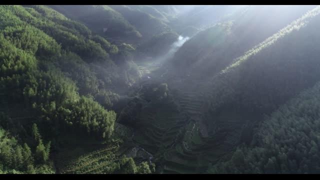 rice paddy in longsheng,guilin,guangxi,china - panoramica video stock e b–roll