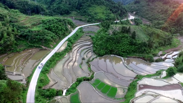 rice paddy in the mountain aerial view - country road stock videos & royalty-free footage