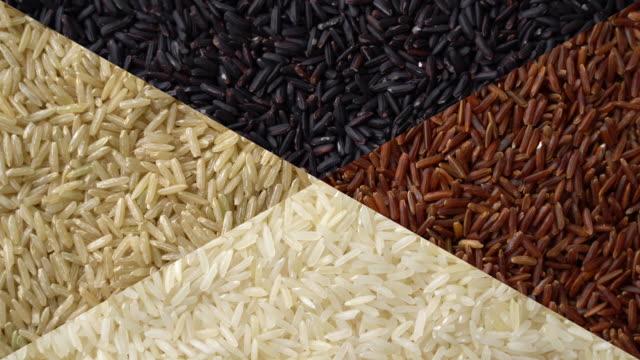 vídeos y material grabado en eventos de stock de arroz rotando con tiro de cerca - línea de producción