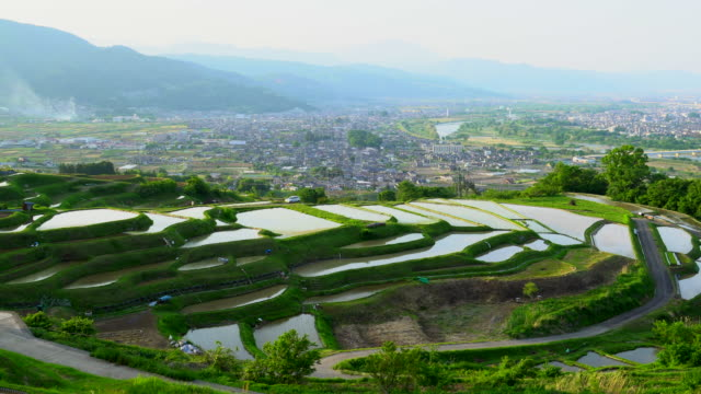 rice terraces (tanada) at dusk,obasute,nagano - nagano prefecture stock videos and b-roll footage