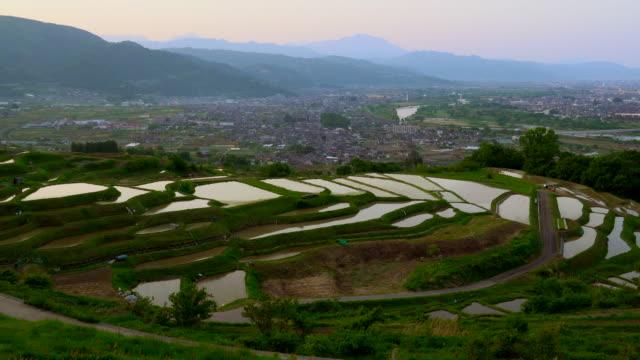 vídeos de stock, filmes e b-roll de terraços de arroz (tanada) no crepúsculo, obasute, nagano - nagano