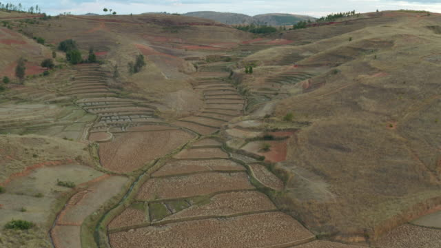 rice terraces / madagascar, africa - uphill stock videos & royalty-free footage