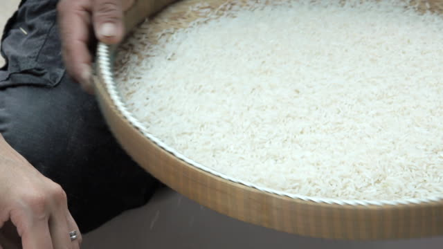 rice - cereal plant stock videos & royalty-free footage
