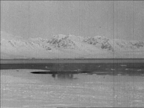 richard byrd's airplane taking off for flight over the north pole / newsreel - 1926年点の映像素材/bロール