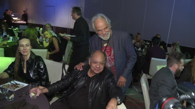 "richard cheech marin and tommy chong at seriousfun children's network 2015 los angeles gala ""an evening of seriousfun celebrating the legacy of paul... - marin stock videos & royalty-free footage"