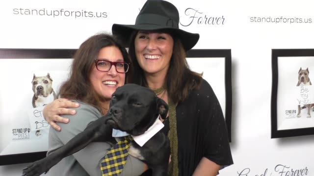vídeos de stock, filmes e b-roll de ricki lake and rebecca corry at the stand up for pits event at hollywood improv in los angeles at celebrity sightings in los angeles on november 05,... - comédia de sketches