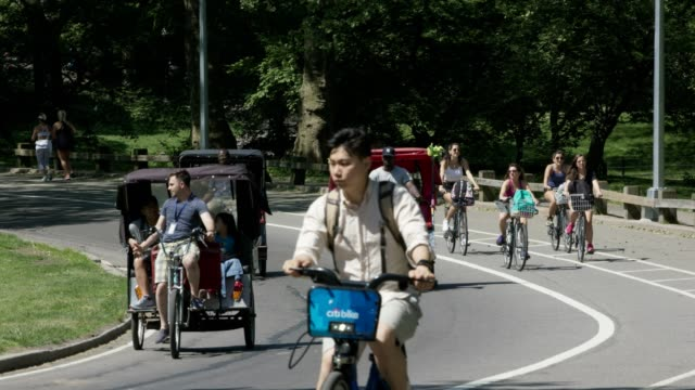 rickshaw drivers with tourist central park - rickshaw stock videos and b-roll footage