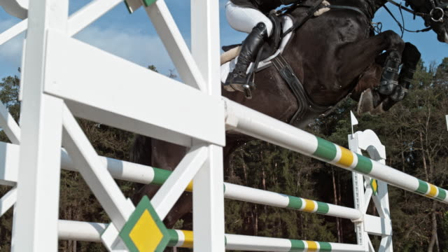 SLO MO Rider and her horse jumping an oxer in sunshine