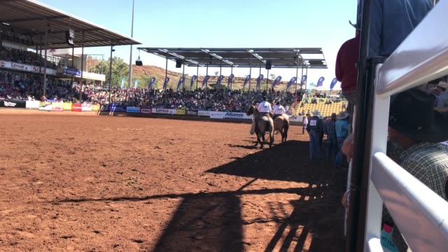 rider competes in the bare back competition of the 2018 mount isa rotary rodeo at the buchanan park events complex on august 12, 2018 in mount isa,... - southern hemisphere stock videos & royalty-free footage