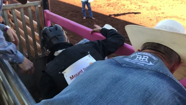 rider competes in the bull riding competition of the 2018 mount isa rotary rodeo at the buchanan park events complex on august 12, 2018 in mount isa,... - southern hemisphere stock videos & royalty-free footage