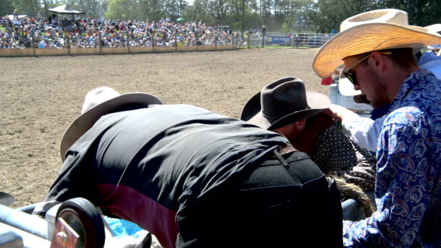 rider competes in the open bareback competition during the 2018 methven rodeo on october 21, 2018 in methven, new zealand. the methven rodeo is one... - rodeo stock videos & royalty-free footage