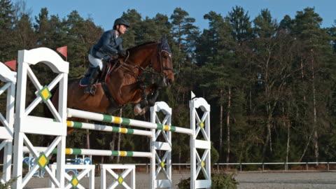 vidéos et rushes de speed ramp rider sautant un oxer sur son cheval au soleil - cheval