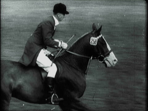 rider leaping horse over brick wall and wooden fence on steeplechase course / fashionable woman turning to man seated beside her in spectator stands... - galoppera bildbanksvideor och videomaterial från bakom kulisserna