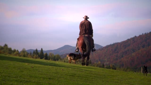 rider on horse - cowboy hat stock videos & royalty-free footage
