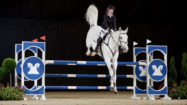 slo mo rider on white horse jumping over oxer - bridle stock videos & royalty-free footage