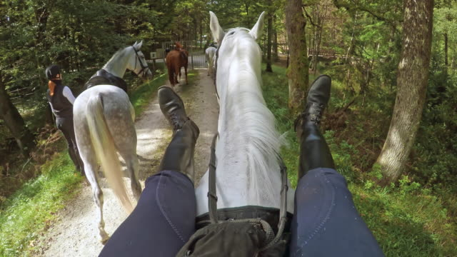 POV Rider stretching her legs on a horse