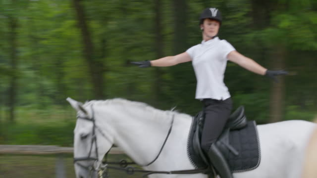 TS Rider training on the horse in the longe