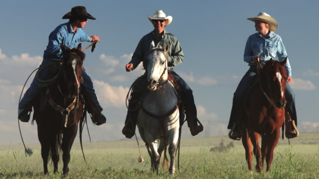 riders in utah field at sunset - recreational horse riding stock videos & royalty-free footage