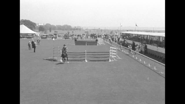 vídeos y material grabado en eventos de stock de riders mounted on horses readying for competition spectators stand at fence barriers one rider takes off / horse approaches and jumps hurdle big tent... - mamífero ungulado