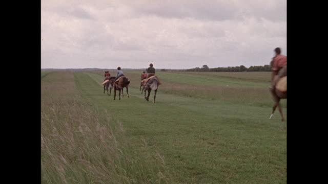 montage riders racing horses in andover / united kingdom - hovdjur bildbanksvideor och videomaterial från bakom kulisserna
