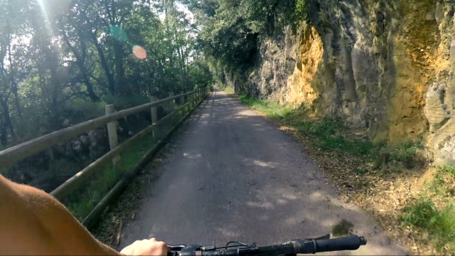 riding a bicycle on a mountain road in nature. - parte de una serie video stock e b–roll