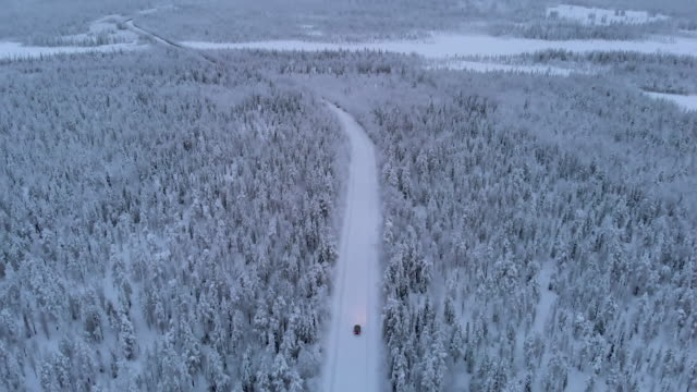 riding a car in lapland during winter - tilt up stock videos & royalty-free footage