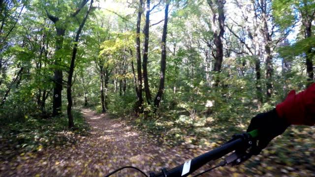in sella a un sentiero singolo veloce nella foresta - limb body part video stock e b–roll