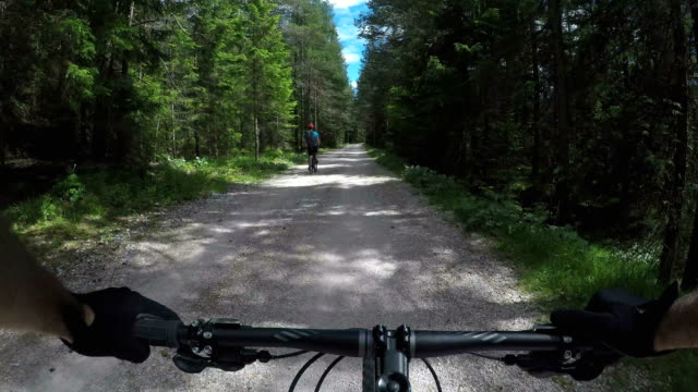 riding a fast single trail in the forest - mountain bike video stock e b–roll