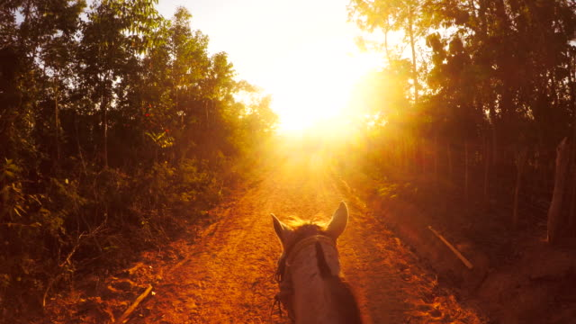 riding a horse at sunset - cuba stock videos & royalty-free footage