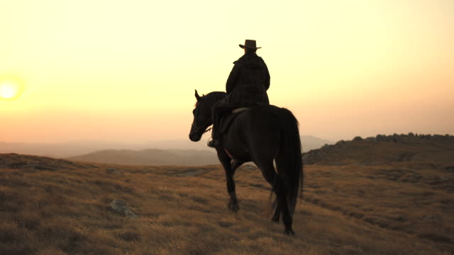 hd: riding across prairie at sunset - horseback riding stock videos & royalty-free footage
