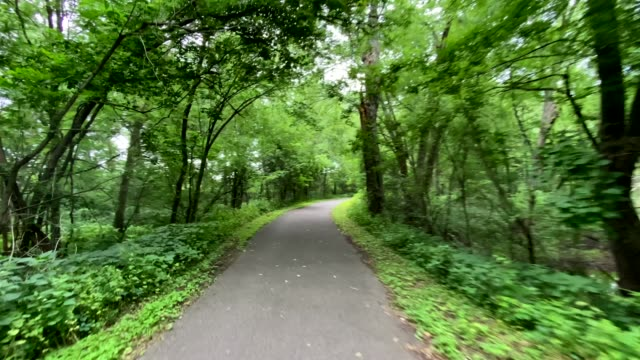 riding along a paved path on a treelined, wooded trail, from bike rider point of view - weg stock-videos und b-roll-filmmaterial