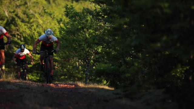 vídeos de stock, filmes e b-roll de andar de bicicleta pelos caminhos selvagens da floresta - triatleta