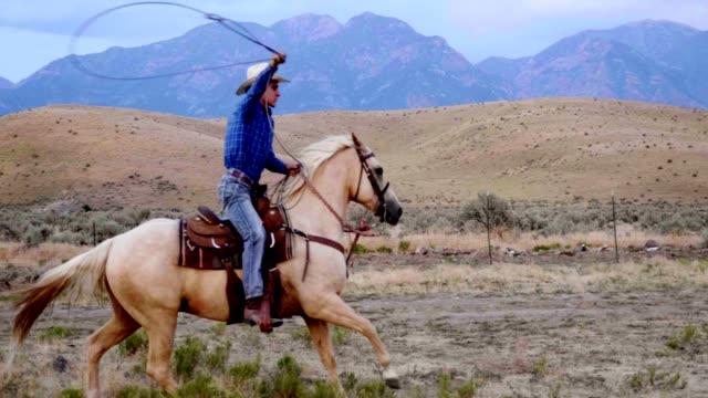 Schnelle Pferde Reiten