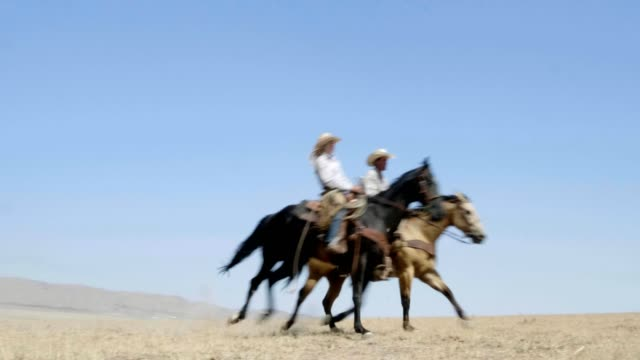 riding fast horses - rancher stock videos & royalty-free footage
