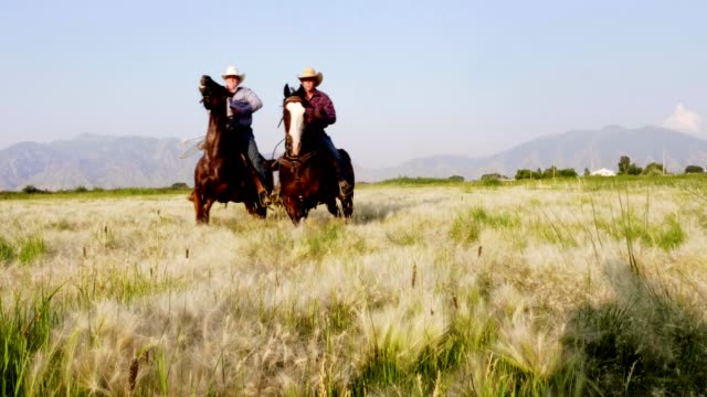 vídeos de stock, filmes e b-roll de andar a cavalo rápido - faroeste