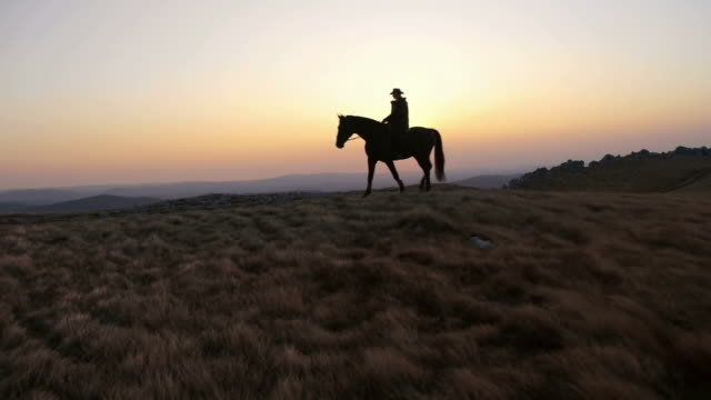 hd: riding horse on the ridge at sunset - prairie stock videos & royalty-free footage