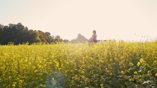 SLO MO Riding horse through canola field