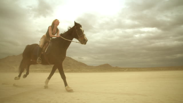 (slow motion) riding horses in the dessert 04 - horse stock videos & royalty-free footage