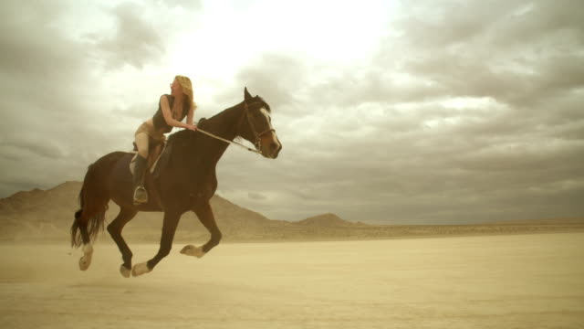 (slow motion) riding horses in the dessert 05 - horseback riding stock videos & royalty-free footage