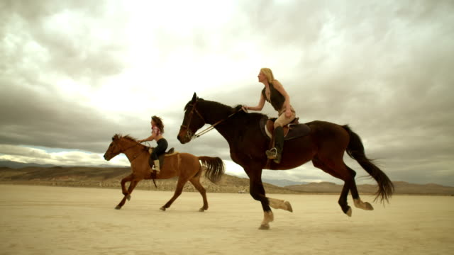 (slow motion) riding horses in the dessert 08 - horseback riding stock videos & royalty-free footage