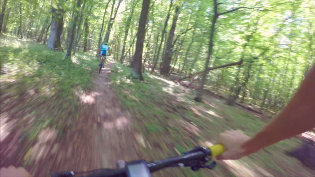 POV Riding in the forest.