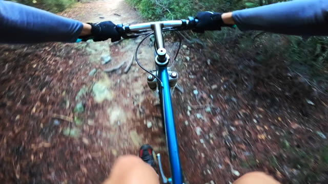 Riding mountain bike in the mountain nature from personal perspective.